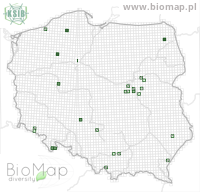 Aclypea opaca - Data on distribution in Poland - Biodiversity Map: UTM 10×10 — minimap