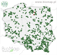 Apatura iris - Data on distribution in Poland - Biodiversity Map: UTM 10×10 — minimap