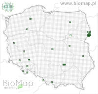 Atheta hypnorum - Data on distribution in Poland - Biodiversity Map: UTM 10×10 — minimap
