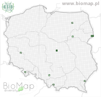 Atheta orphana - Data on distribution in Poland - Biodiversity Map: UTM 10×10 — minimap