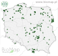 Calathus micropterus - Data on distribution in Poland - Biodiversity Map: UTM 10×10 — minimap