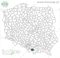Carabus auronitens escheri - Data on distribution in Poland - Biodiversity Map: districts — minimap