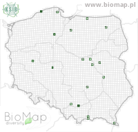 Chlaenius vestitus - Data on distribution in Poland - Biodiversity Map: UTM 10×10 — minimap
