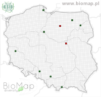 Cosmorhoe ocellata - Data on distribution in Poland - Biodiversity Map: UTM 10×10 — minimap