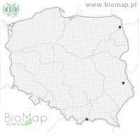 Ecliptopera capitata - Data on distribution in Poland - Biodiversity Map: UTM 10×10 — minimap