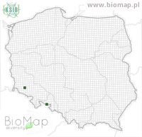 Eupithecia egenaria - Data on distribution in Poland - Biodiversity Map: UTM 10×10 — minimap