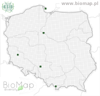 Eupithecia nanata - Data on distribution in Poland - Biodiversity Map: UTM 10×10 — minimap