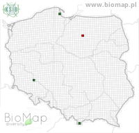 Eupithecia satyrata - Data on distribution in Poland - Biodiversity Map: UTM 10×10 — minimap