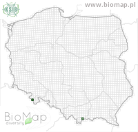 Eupithecia sinuosaria - Data on distribution in Poland - Biodiversity Map: UTM 10×10 — minimap