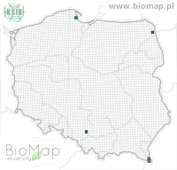 Eupithecia tenuiata - Data on distribution in Poland - Biodiversity Map: UTM 10×10 — minimap
