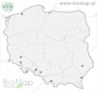 Gyrophaena polita - Data on distribution in Poland - Biodiversity Map: UTM 10×10 — minimap