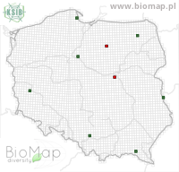 Idaea emarginata - Data on distribution in Poland - Biodiversity Map: UTM 10×10 — minimap