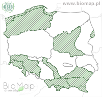Larinioides sclopetarius - Data on distribution in Poland - Biodiversity Map: KFP regions — minimap