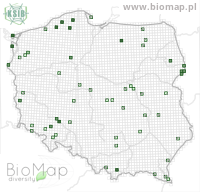 Lathrobium fulvipenne - Data on distribution in Poland - Biodiversity Map: UTM 10×10 — minimap
