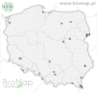Lathrobium pallidipenne - Data on distribution in Poland - Biodiversity Map: UTM 10×10 — minimap