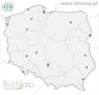 Lathrobium rufipenne - Data on distribution in Poland - Biodiversity Map: UTM 10×10 — minimap