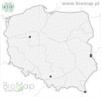 Matilella fusca - Data on distribution in Poland - Biodiversity Map: UTM 10×10 — minimap