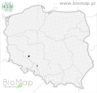 Melanthia procellata - Data on distribution in Poland - Biodiversity Map: UTM 10×10 — minimap