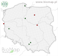 Mesoleuca albicillata - Data on distribution in Poland - Biodiversity Map: UTM 10×10 — minimap