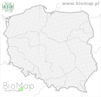 Monochamus alternatus - Data on distribution in Poland - Biodiversity Map: UTM 10×10 — minimap