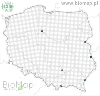 Mordellistena connata - Data on distribution in Poland - Biodiversity Map: UTM 10×10 — minimap