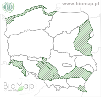 Oedothorax retusus - Data on distribution in Poland - Biodiversity Map: KFP regions — minimap