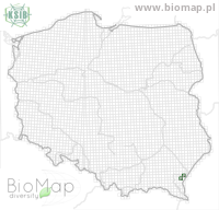 Otiorhynchus novellae - Data on distribution in Poland - Biodiversity Map: UTM 10×10 — minimap